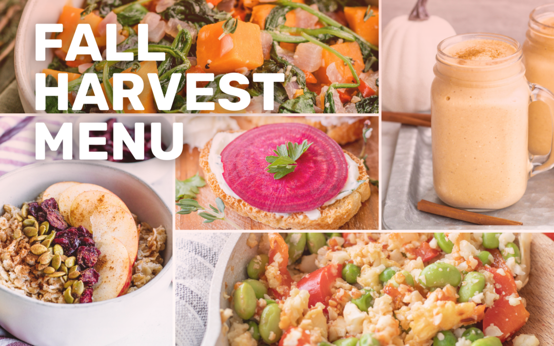 Celebrate the fall harvest of fruits and vegetables planted in the spring!